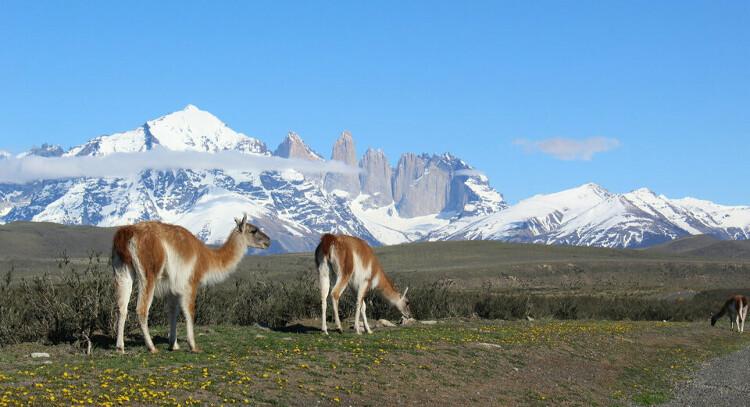 Plan Patagonia
